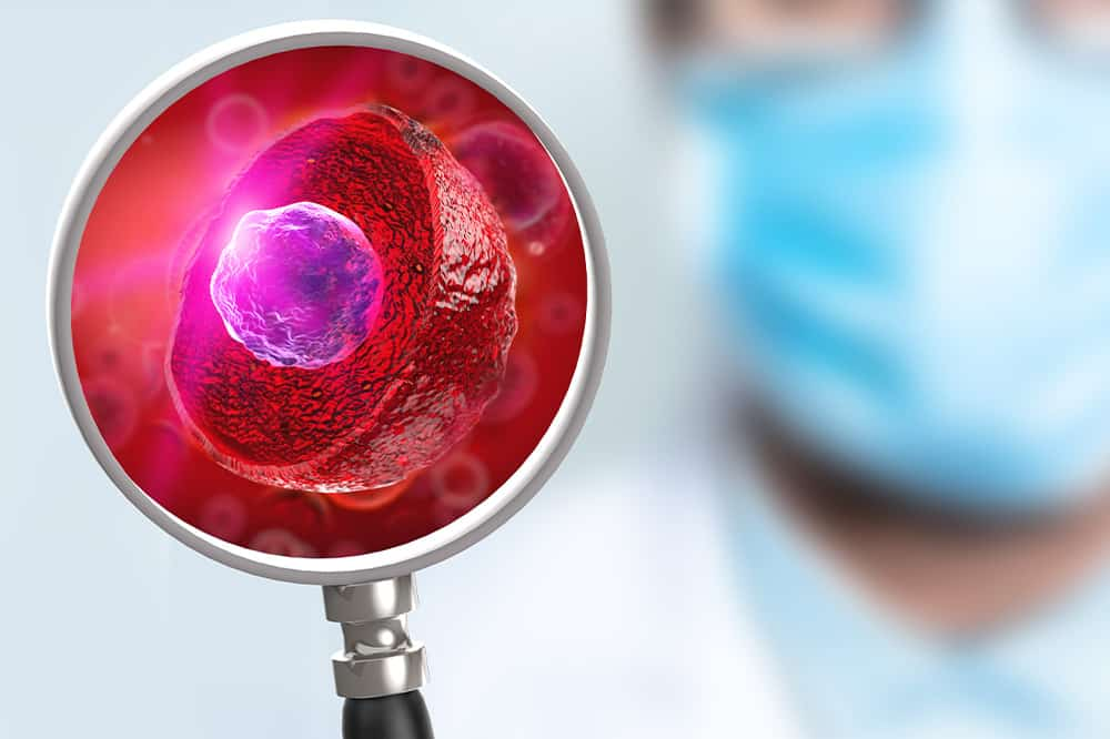 Jak pobudzić komórki macierzyste do pracy