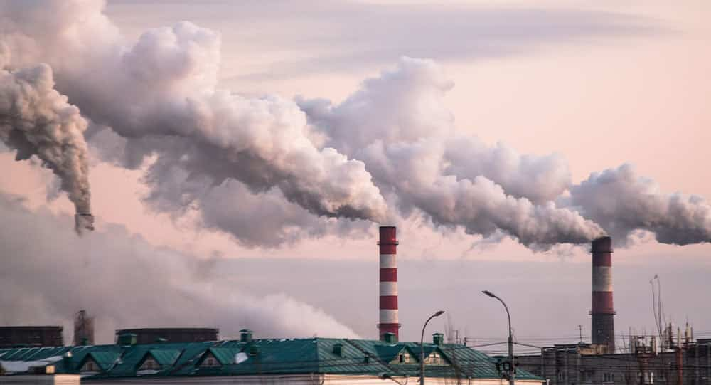 Smog a DNA